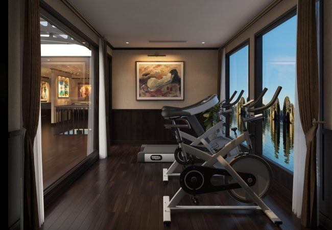The ship's gym on the upper deck, with a painting on the wall and large windows overlooking the bay Cruises Gallery